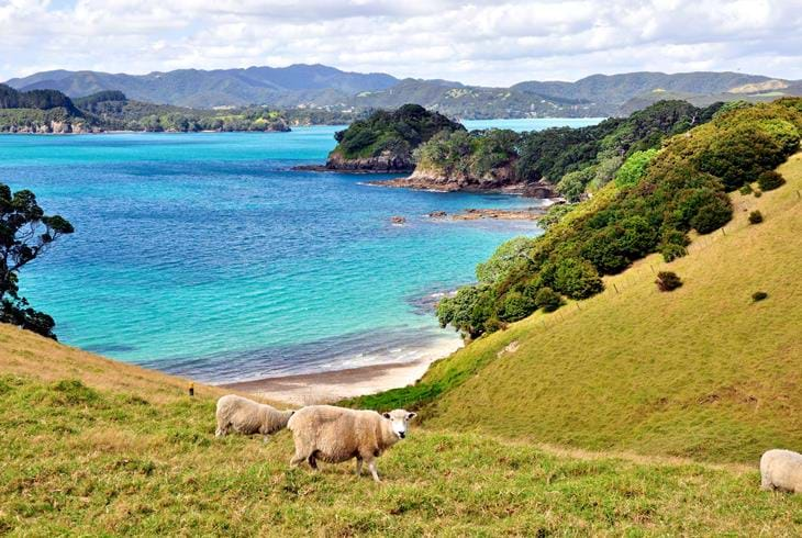 Bay of Islands i New Zealand