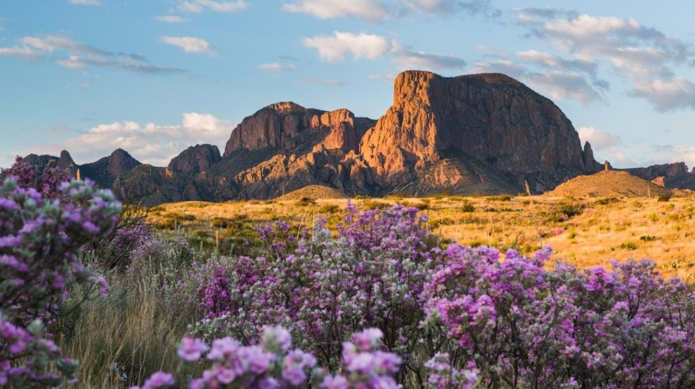 Big Bend National Park i Texas - Reiser til USA