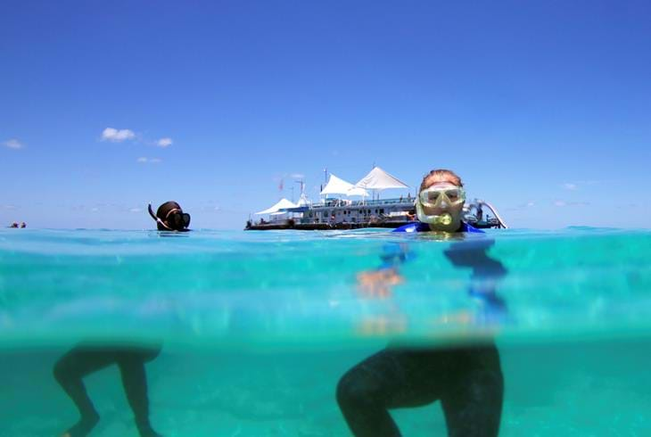 Snorkling på Great Barrier Reef