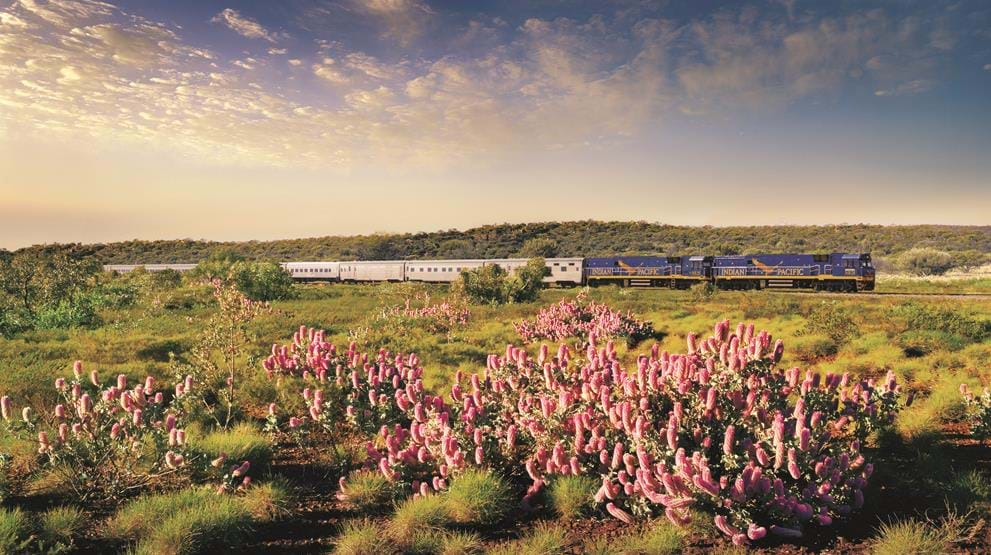 Reis med Indian Pacific i Australia
